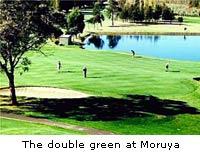 The double green at Moruya